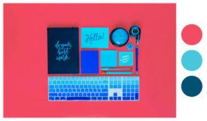 Color Scheme for Your E-Commerce Website